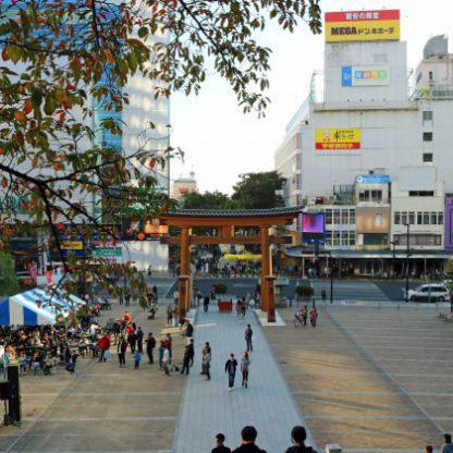 宇都宮 餃子祭り